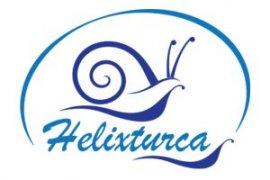 Helixturca